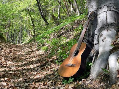 Outdoor Trail Guitar