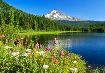 Alpine lake with Mt. Hood in the background